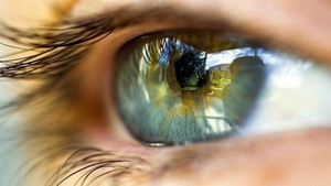 The researchers found carotenoid supplements can boost strong eye sight
