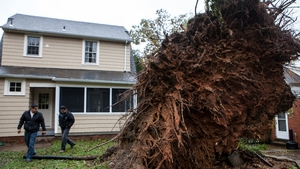 Two Washington DC residents survey a large tree that was uprooted during the storm