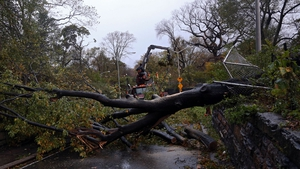 Workers attempt to clear a fallen tree blocking East 96th Street in Central Park