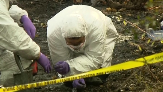 Human remains discovered in Catherine Gowing search in Wales