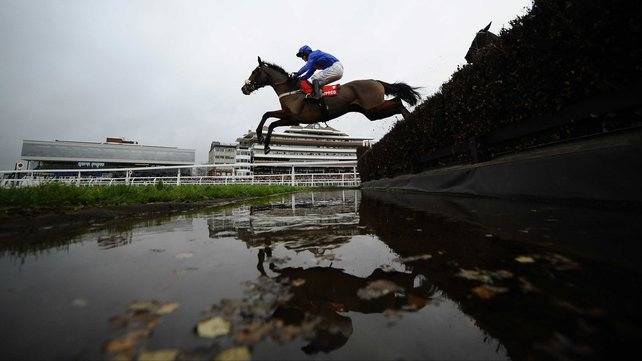 Colin Tizzard's Cue Card, former winner of the Cheltenham bumper, starts his season in the Haldon Gold Cup