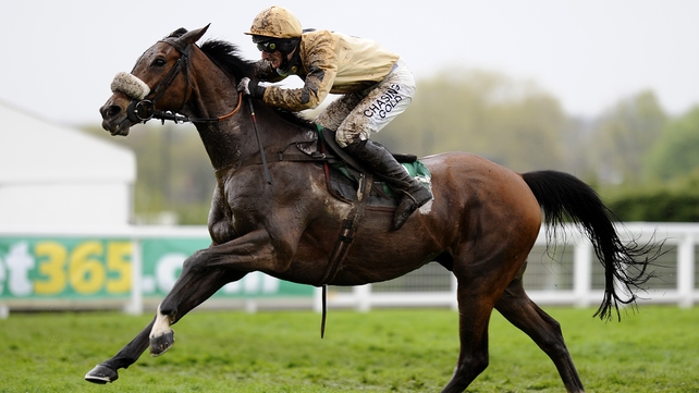 Tidal Bay is expected to revert to hurdles for the Cheltenham Festival