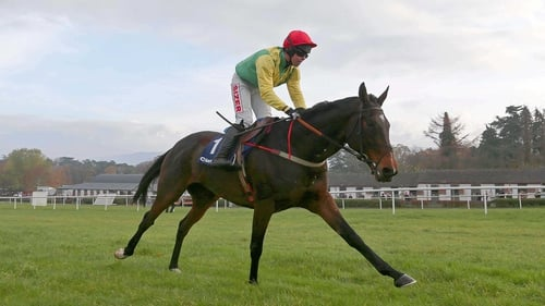 The dual Cheltenham Festival winner is in good order ahead of this year's Prestbury Park gathering