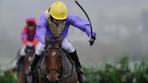 Prestbury Park again proved a happy hunting ground for Uncle Junior over the unique obstacles