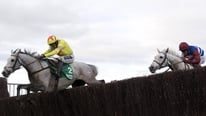 Kel Mansfield reports on Al Ferof's win in the Paddy Power Gold Cup
