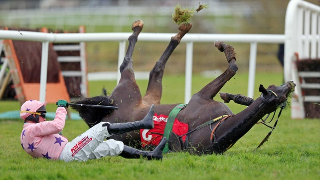 Paul Carberry slides clear of the rolling Go Native after their fall at the last hurdle in the Morgiana Hurdle