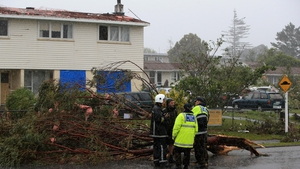 Uprooted trees and storm debris are scattered around the Auckland suburb of Hobsonville in the aftermath of a tornado
