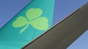 The Government decision on the IAG bid for Aer Lingus has been delayed for months by the preparation of the report