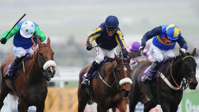 Jessies Dream, seen here finishing second behind Boston Bob (centre) in the 2011 RSA Chase, suffered a fatal injury on the gallops