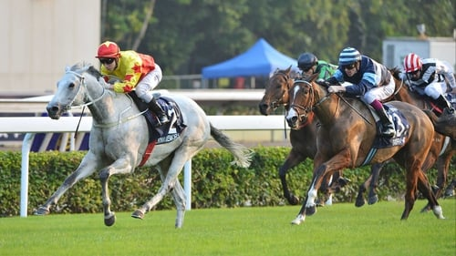 California Memory, under Matthew Chadwick, ran out a comfortable winner of the Hong Kong Cup for a second time, beating Giofra