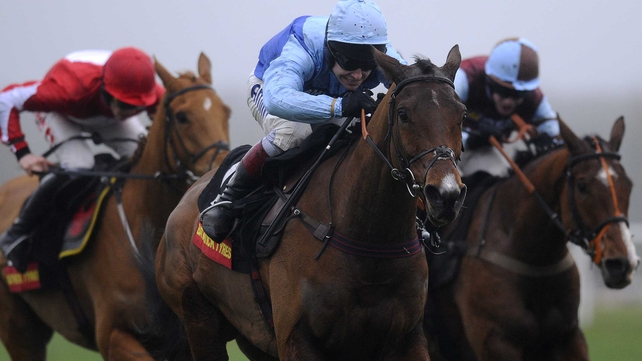 Fingal Bay had been prominent in the antepost market for the RSA Chase at the Cheltenham Festival