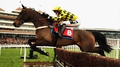 Robin heads Ladbroke Hurdle hopefuls