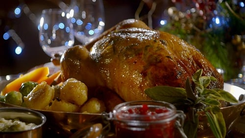 Christmas Turkey.Kevin S Christmas Turkey