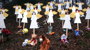 DECEMBER: One of the worst mass shootings in US history at Sandy Hook Elementary School in Connecticut sparked debate on gun control in America