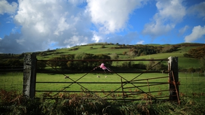 OCTOBER: The pink ribbon was used as a sign of hope by those who searched for missing five-year-old April Jones in Wales