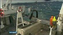 EU fishing quota agreed following marathon talks