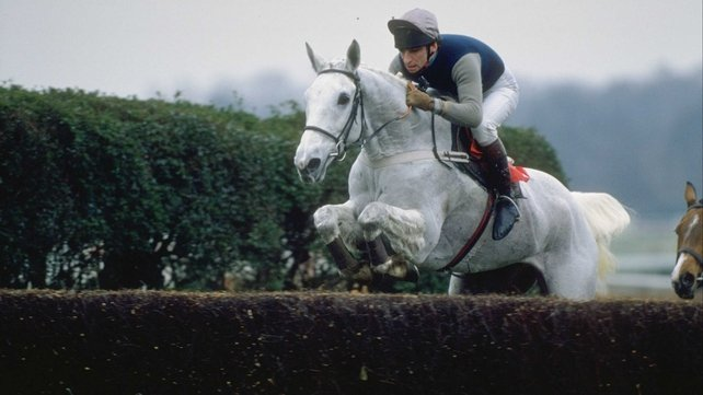 Four-time King George winner Desert Orchid