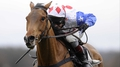 Williams believes World Hurdle is wide open