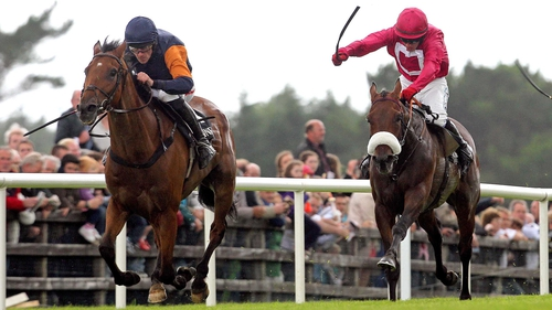 Rebel Fitz (l) may not run on Saturday if the ground is too heavy at Gowran Park