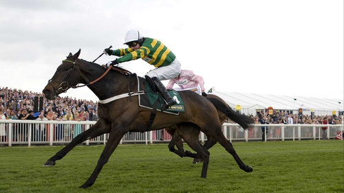 Darlan, who was a clear second-favourite for the Champion Hurdle before his demise, won six of his eight races
