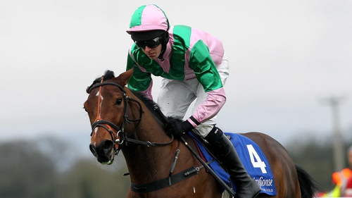 Argocat won the Greenmount Park Novice Chase by eight lengths