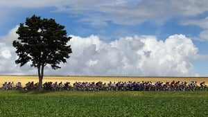 The peloton makes its way through the French countryside on stage six of the 2012 Tour de France