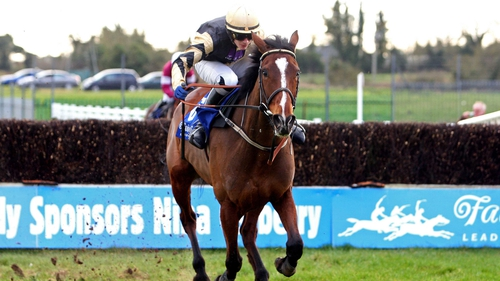 Prince De Beauchene is a best-price 10-1 for the Grand National