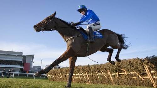 Ruby Walsh has pledged his loyalty to Hurricane Fly