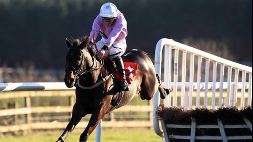 Solwhit none the worse after his late withdrawal at Punchestown