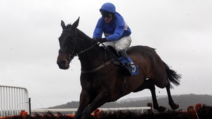 A racecourse return is planned for Cappa Bleu some time this month