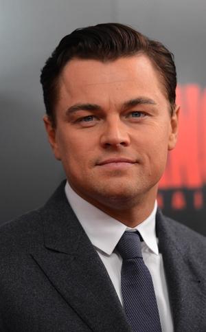 Leonardo DiCaprio has been cast in a new revenge thriller The Revenant