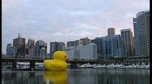 Rubber duck sails into Sydney Harbour
