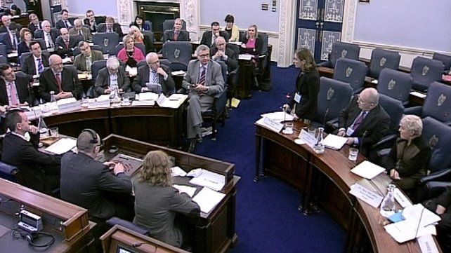 The Oireachtas health committee held meetings on the expert group report in January