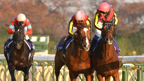 Orfevre (centre) will not contest the Dubai World Cup