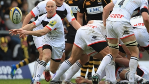 Peter Stringer has previously had spells at Saracens and Newcastle