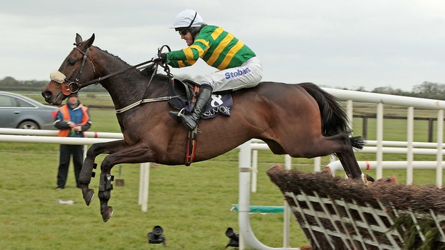 Jenari sustained an injury on the gallops on Tuesday