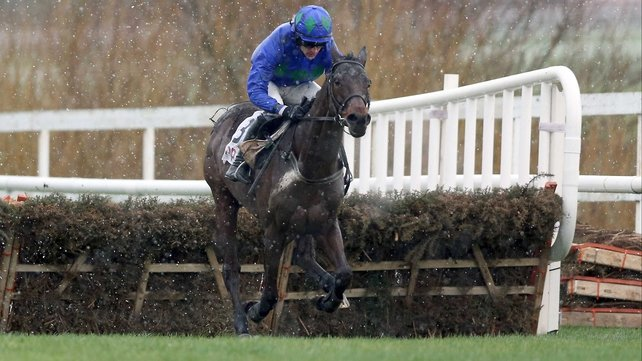 Conditions were atrocious but Hurricane Fly braved them to win a third Irish Champion Hurdle