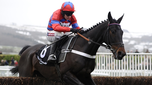 Sprinter Sacre will run in the Champion Chase at Punchestown on Tuesday