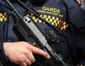 Dangers for gardai