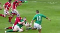 Simon Zebo's elevation to 6 Nations star doesn't surprise his mentors.