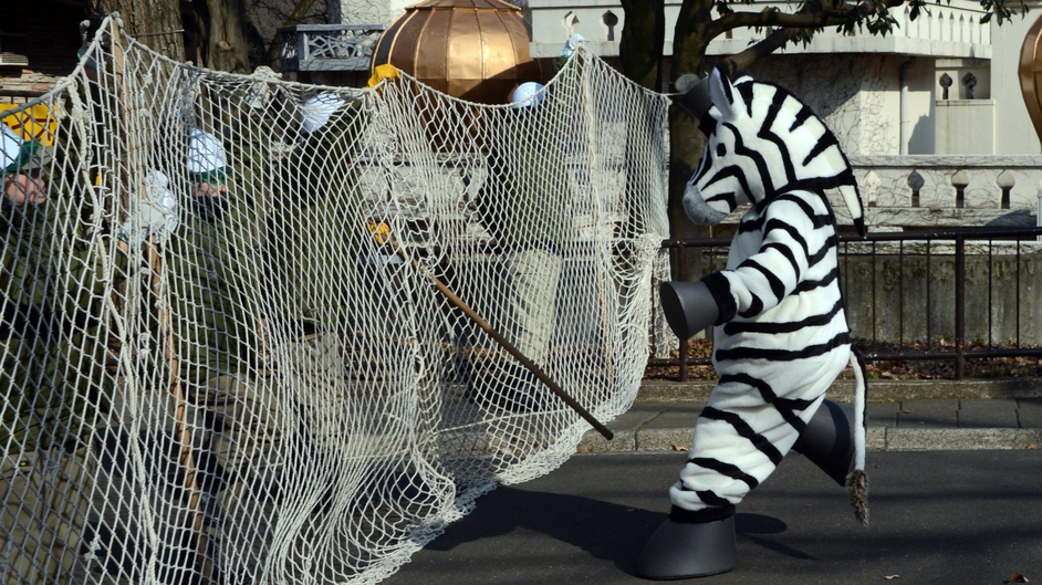 A zoo staff member dressed as a zebra performs in a drill to practice what to do in the event of an animal escape at the Tama zoo in a western suburb of Tokyo