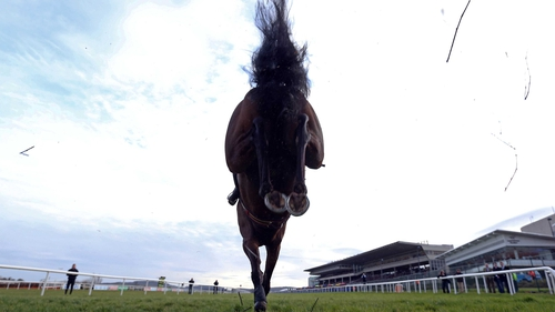 Sir Des Champs is one of 12 horses still standing their ground for Friday's Gold Cup