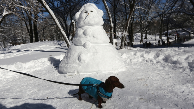 A dog pauses near a snow man in Central Park, New York