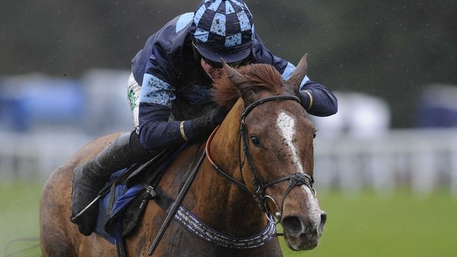 Melodic Rendezvous relished the testing conditions at Exeter