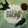 Album of the Week: Birds of Chicago by Birds of Chicago
