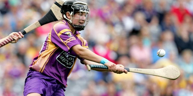 Fiona Rochford played a leading part in Wexford's victory