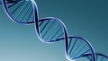 60th Anniversary Of DNA Double Helix Discovery