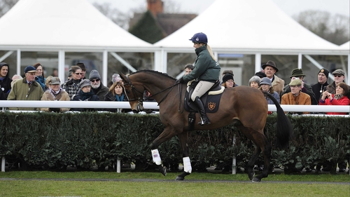 Kauto Star and Laura Collett treat race-goers to a demonstration of the dual Gold Cup winner's dressage skills