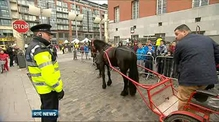 Smithfield Horse Fair in Dublin off to a good start