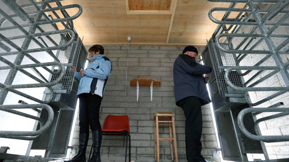 Volunteers operate the turnstiles at Wexford Park